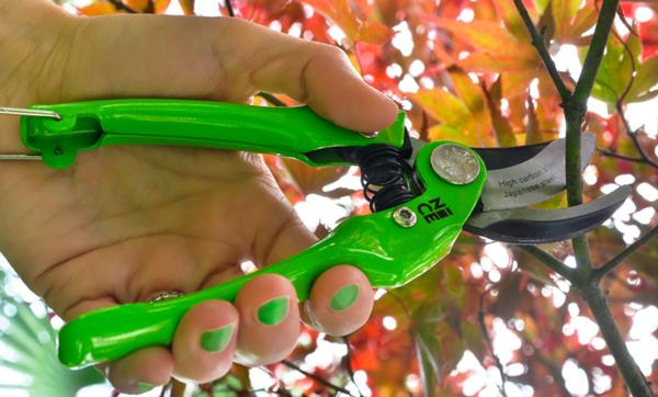 712 - Professional pruning shears